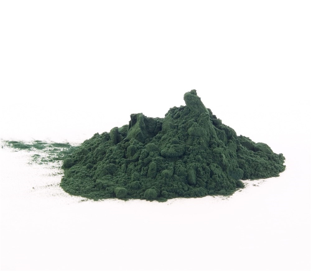 Polvo de la microalga o bacteria Spirulina
