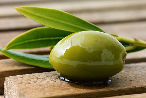 dieta de hojas de olivo e hipertensión