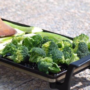 Brócoli a la plancha