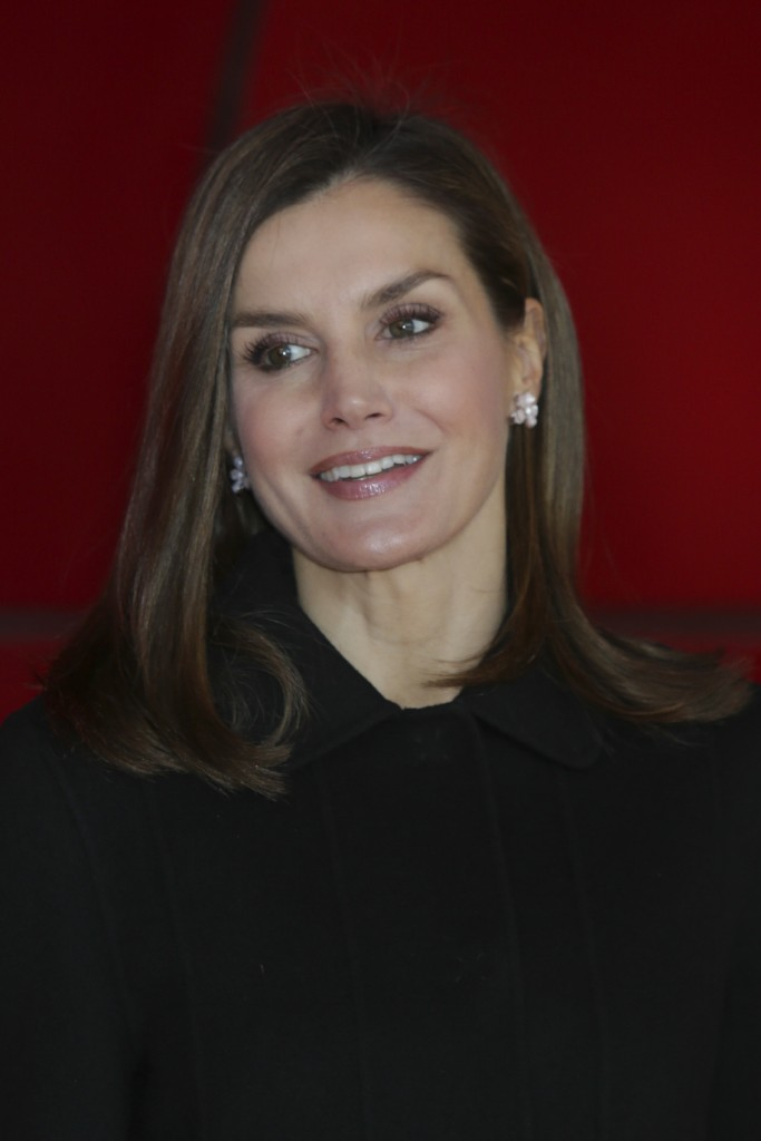 Queen Letizia during the foundation awards victims of terrorism 2017 in Madrid Monday January 15 2018