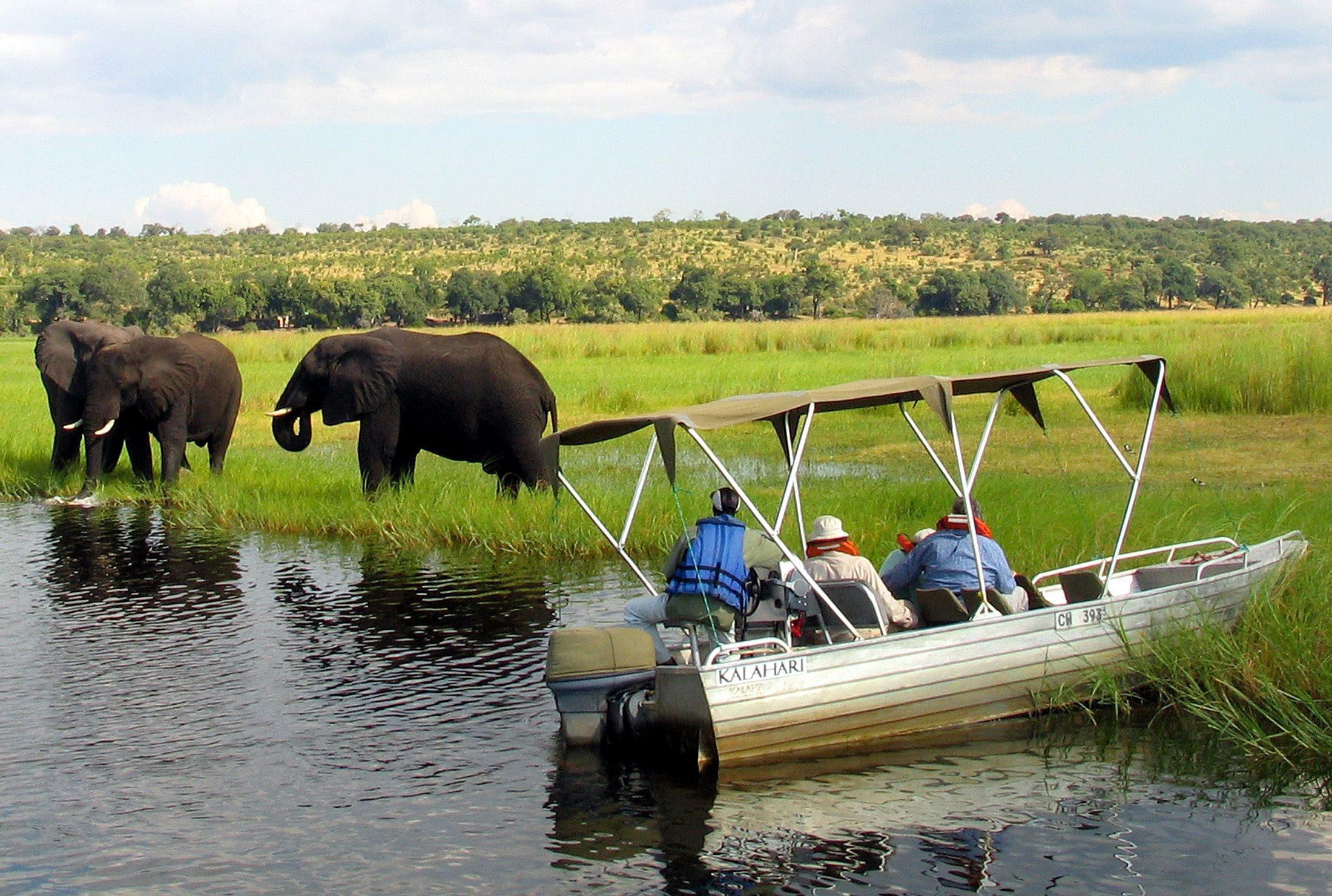 Foreign tourists in safari riverboats observe elephants along the Chobe river bank near Botswana's northern border where Zimbabwe, Zambia and Namibia meet