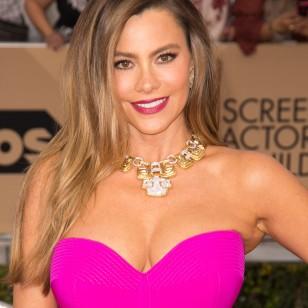 El maquillaje de Sofia Vergara (43 años)